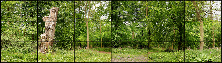 """MAY 11TH 2011 WOLDGATE 12:45PM"" 18 DIGITAL VIDEOS SYNCHRONIZED AND PRESENTED ON 18 55"" NEC SCREENS TO COMPRISE A SINGLE ART WORK, 27 X 47 1/8"" EACH 81 X 287"" OVERALL DURATION: 2:00 © DAVID HOCKNEY"
